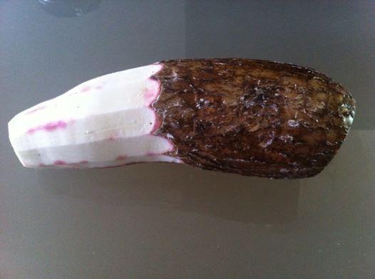 Half peeled Cassava